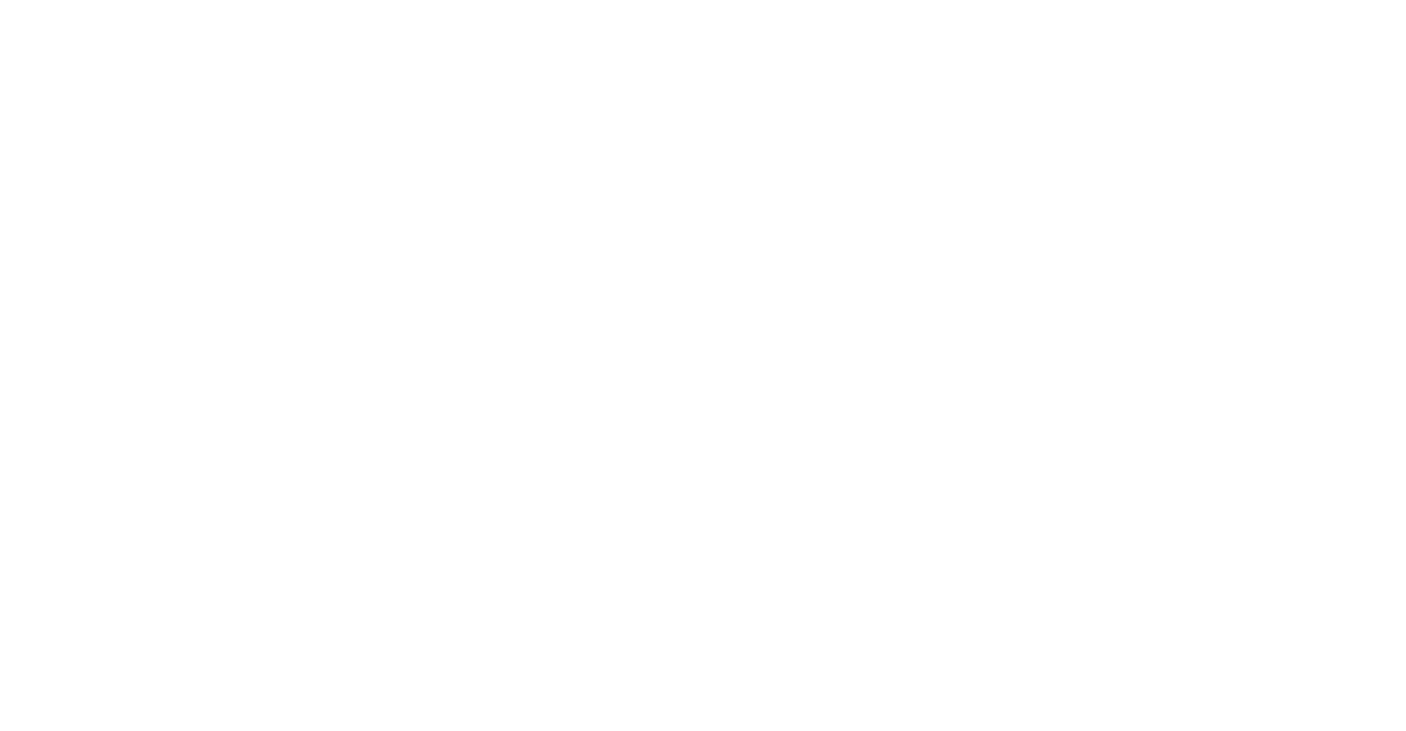 TAV PASSPORT